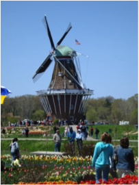 Visitors Walking Around the Windmill and Gardens